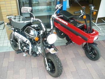 moto-03.jpg